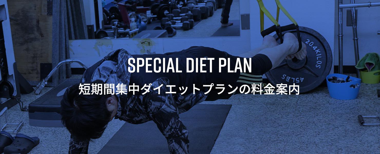 special diet plan